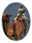 Ntw french rep egy cav light bedouin camel warriors icon.png