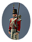 Ntw britain spa inf elite british foot guards icon.png